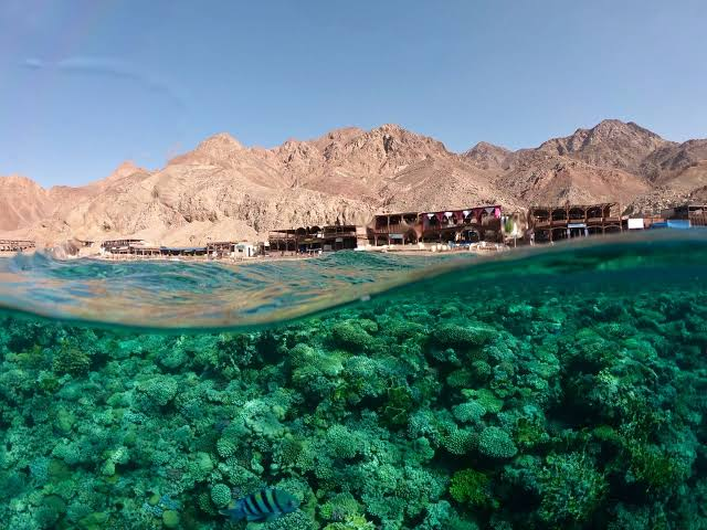 Dahab Excursions | Dahab Safari Day Tours | Egypt Day Tours