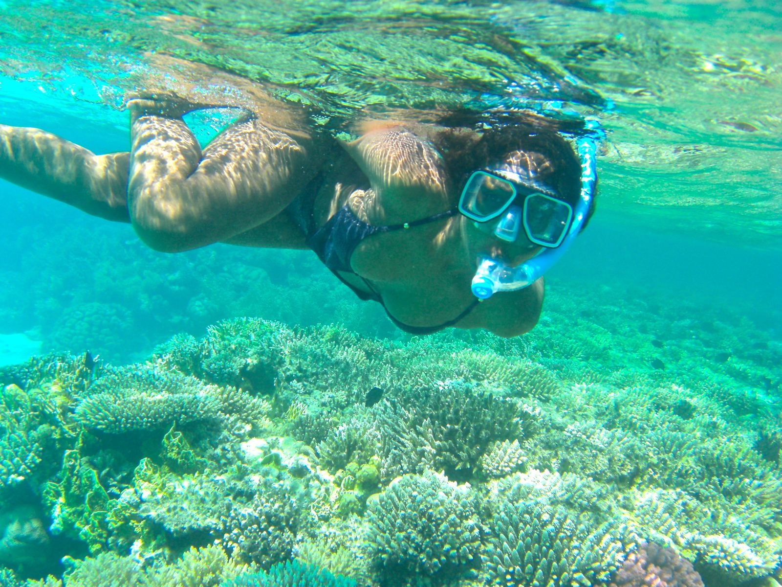 Marsa Alam Excursions | Marsa Alam Snorkeling Trip