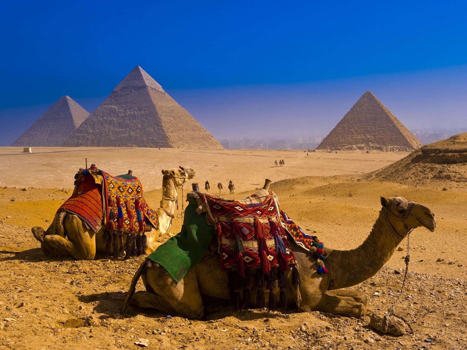 Ägypten Tagestouren & Ägypten Reisepakete