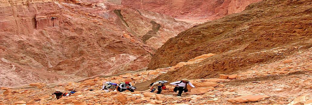 2-Days Trekking  in Sinai Wadis