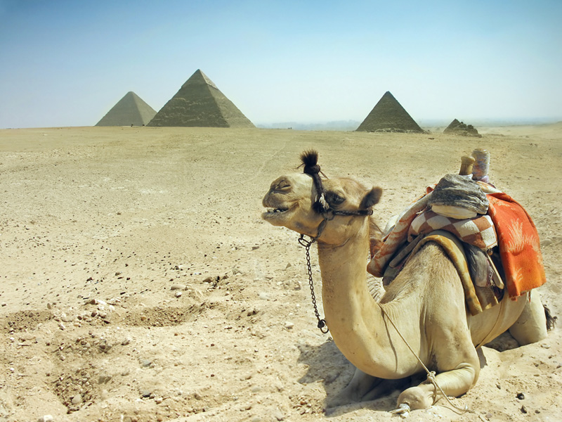 11 Day Egypt Tour | 11 Day Egypt Itinerary