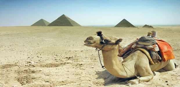 Pyramids Tour and Nile Cruise Lunch from Sokhna Port