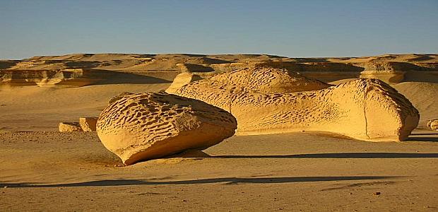 Desert Safari Trip to Wadi El Rayan and Wadi Hitan