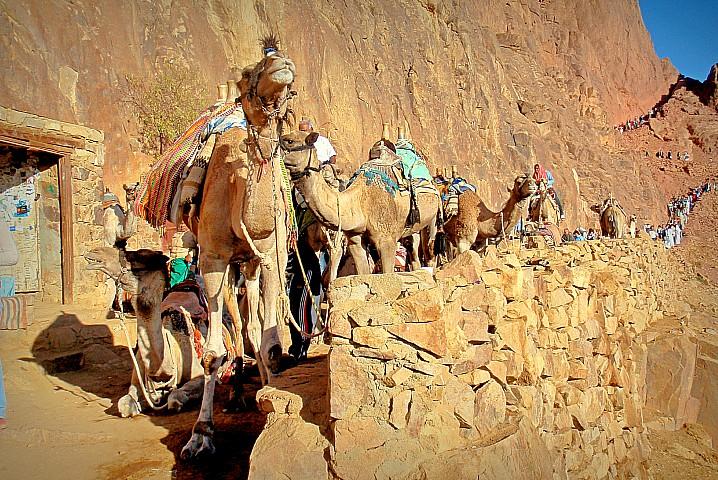 Farsh Umm Seila Sinai Mountain Meditation