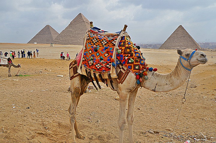 5 Days Cairo and Luxor  Vacation | Tour Packages in Egypt | Egypt Group Tours
