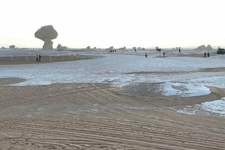 El Gilf El Kebir, Bahariya Oasis, and White Desert Tour Package