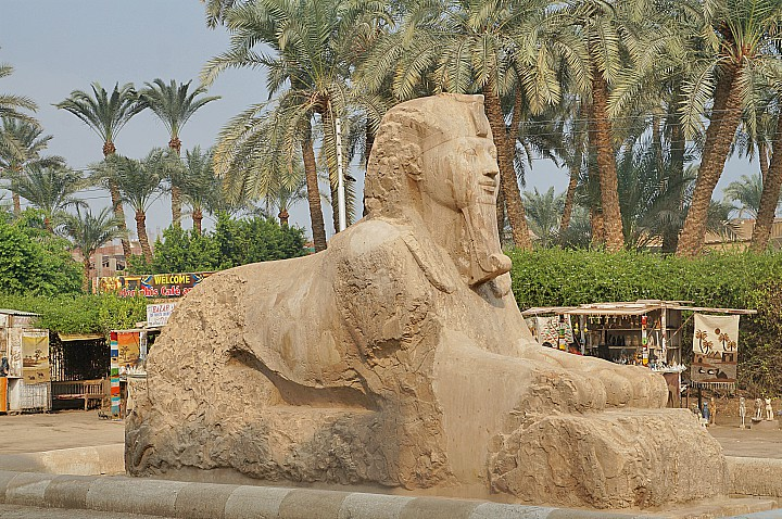 7 Days Cairo and Sharm El Sheikh Wheelchair Accessible Itinerary