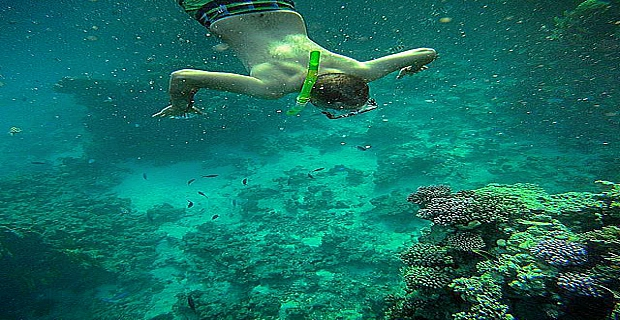 Ain El Sokhna Snorkeling Tours from Cairo