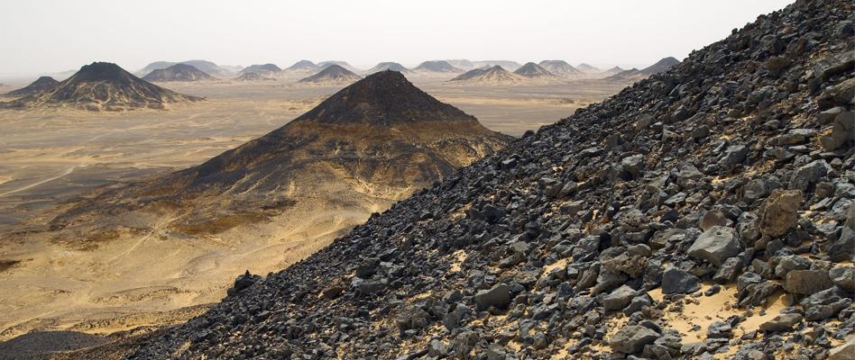Bahariya Oasis and White Desert Tour From Cairo | Cairo day tours